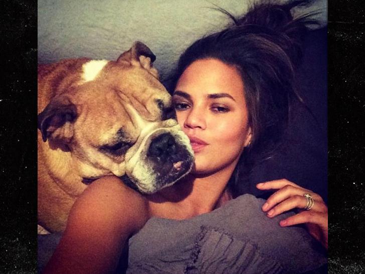 0307-chrissy-teigen-dog-died-instagram-2.jpg