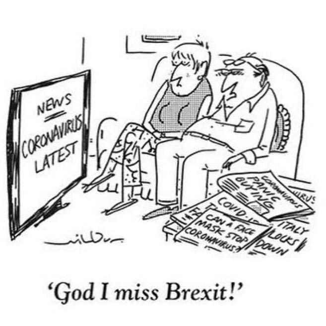 corona brexit.jpg
